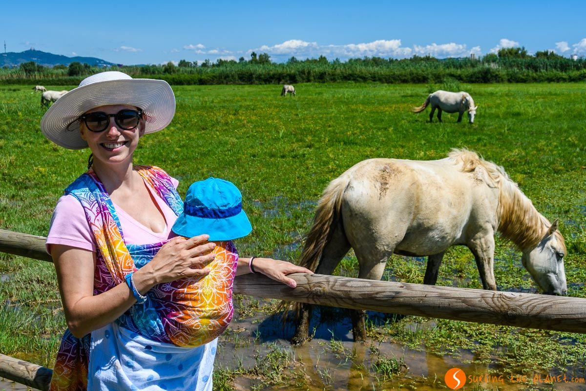 Con los caballos de la Camarga, Delta del Llobregat, Cataluña, España | Qué ver y hacer en el Delta del Llobregat