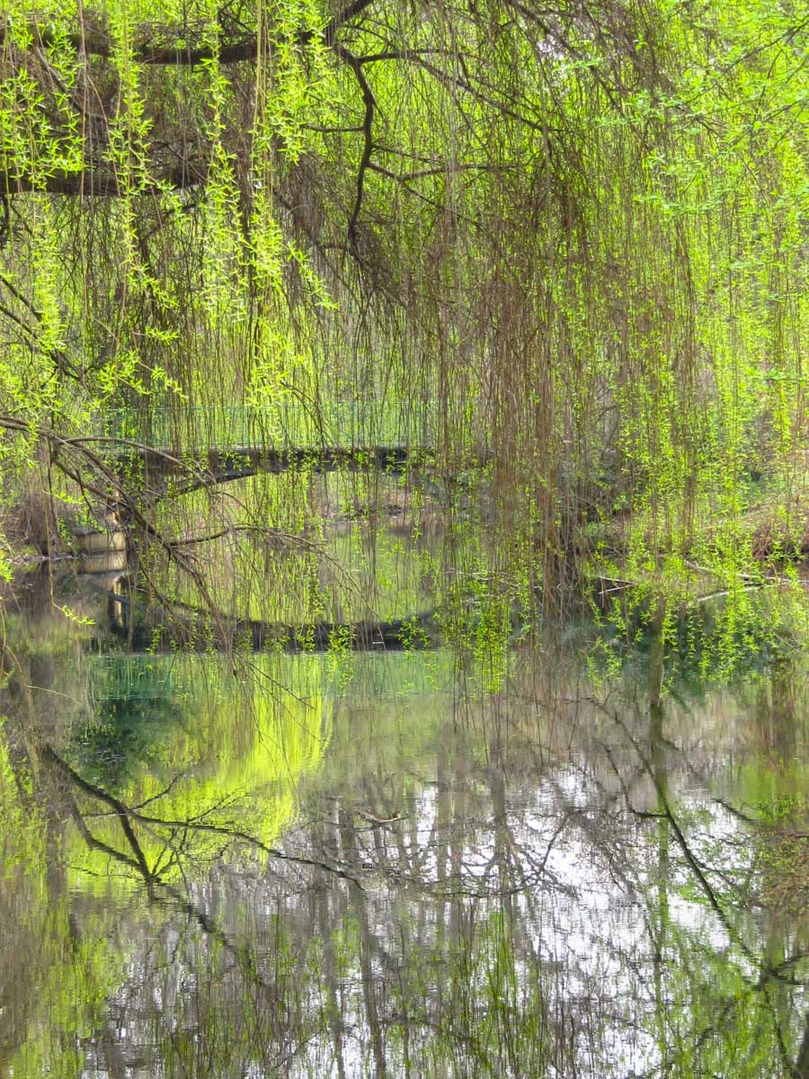 Tiergarten, Berlín, Alemania