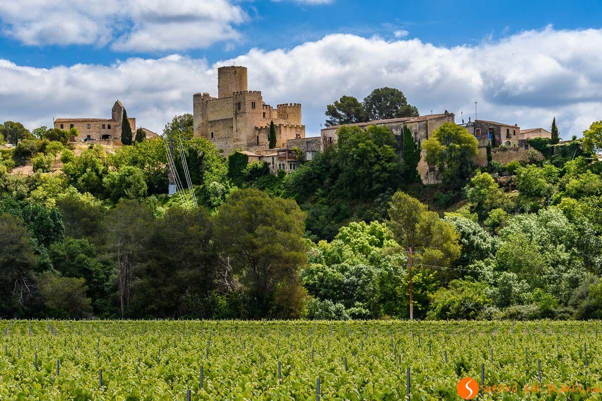 Paisaje típico, El Penedès, Cataluña, España | 10 cosas que ver y hacer en el Penedès