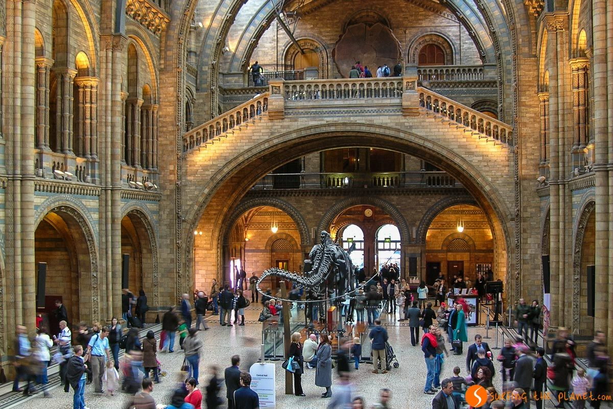 Museo Historia Natural, Londres, Inglaterra