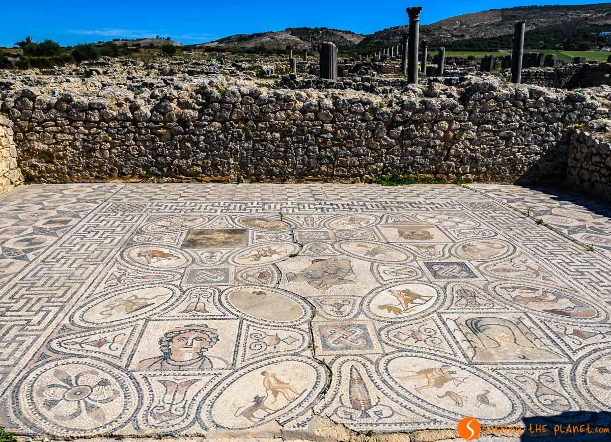 Mosaico, Volubilis, Marruecos | Qué visitar en Marruecos