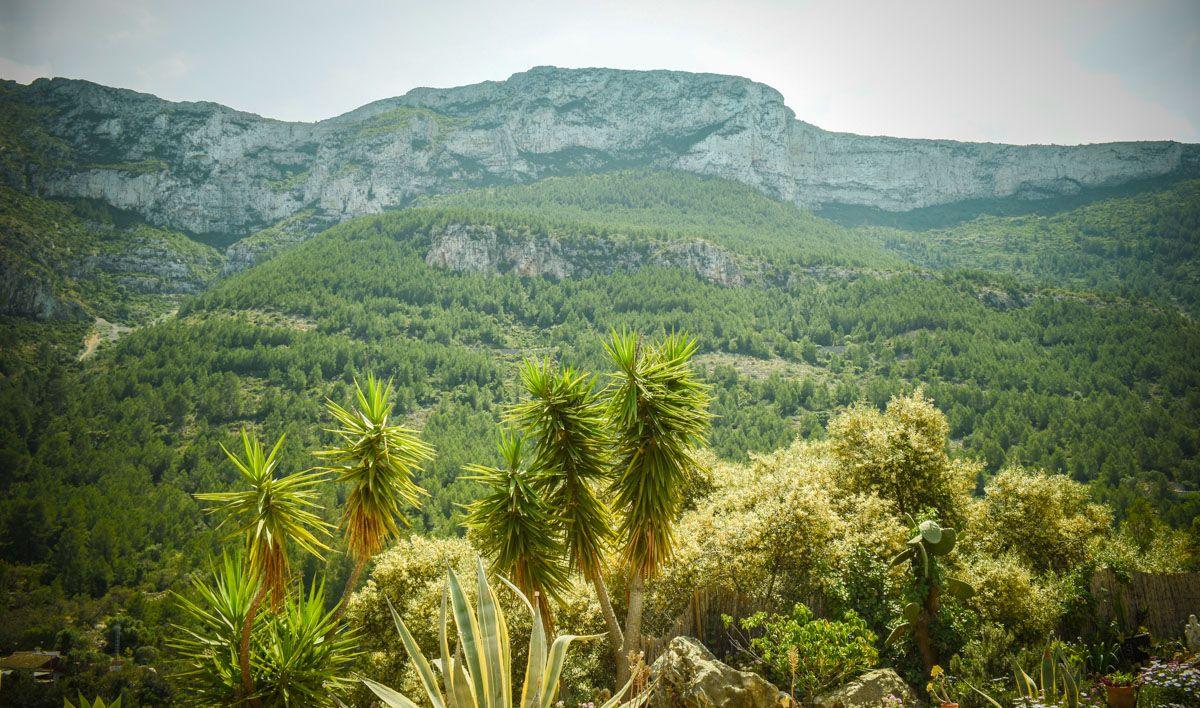 Parque Natural Montgó, Provincia de Alicante, Comunidad Valenciana