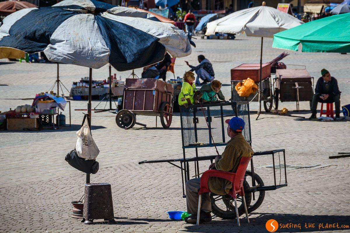 Plaza el Hedim, Meknes, Marruecos