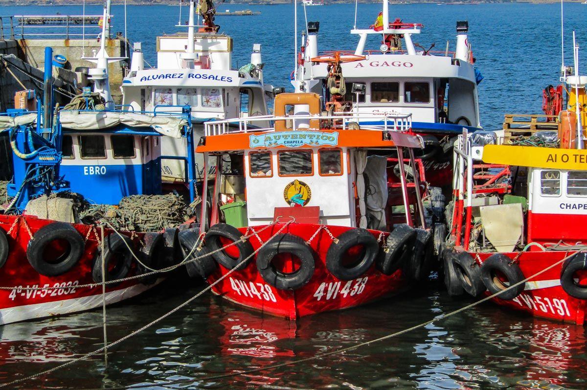 Barcos, Río de Vigo, Pontevedra, Galicia  45 cosas que ver y hacer en Pontevedra Provincia