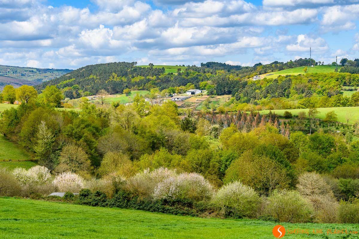 Paisaje verde, Lugo, Galicia | 30 imprescindibles que ver y hacer en Lugo