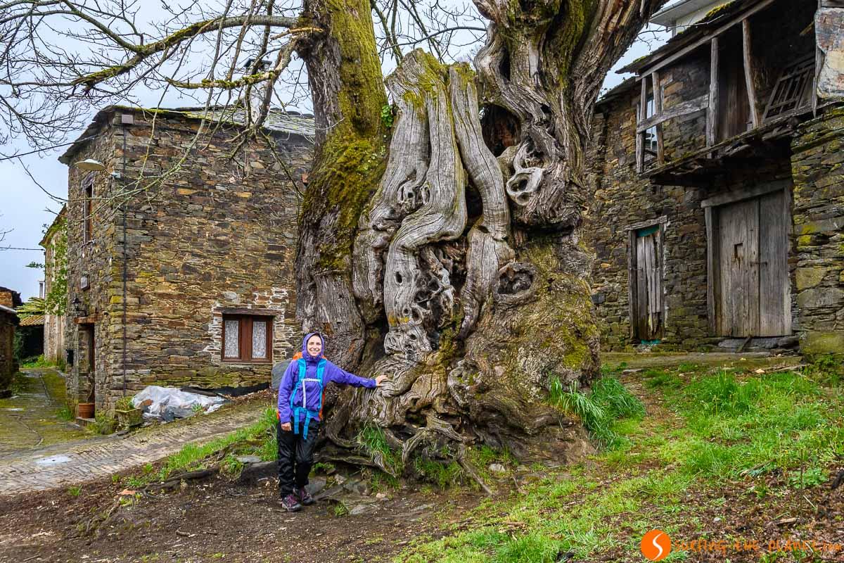 Qué ver y hacer en Galicia