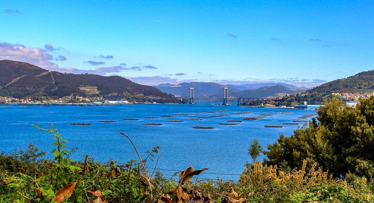 Ría de Vigo, Pontevedra, Galicia
