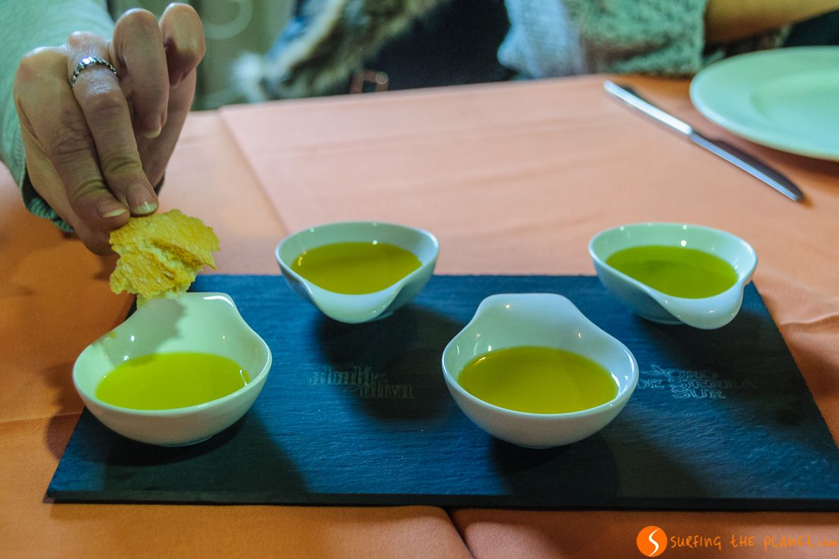 Degustación de aceites, Provincia de Jaén, Andalucía | Qué hacer en Jaén