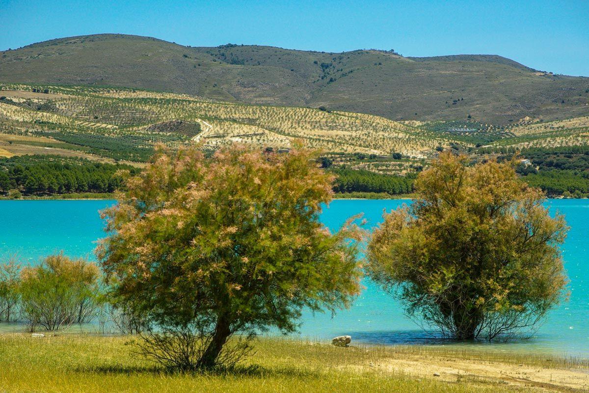 Lago de Bermejales, Arenas del Rey, Granada, Andalucía