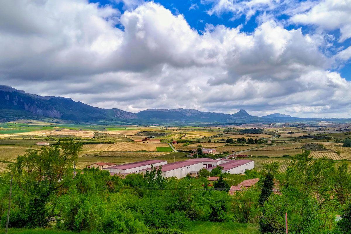 Vistas de Laguardia, Álava, País Vasco | Qué ver y hacer en la Rioja Alavesa