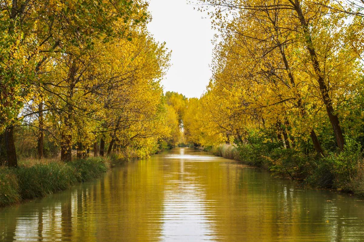 Canal de Castilla, Valladolid, Castilla y León |Que ver y hacer en Valladolid provincia